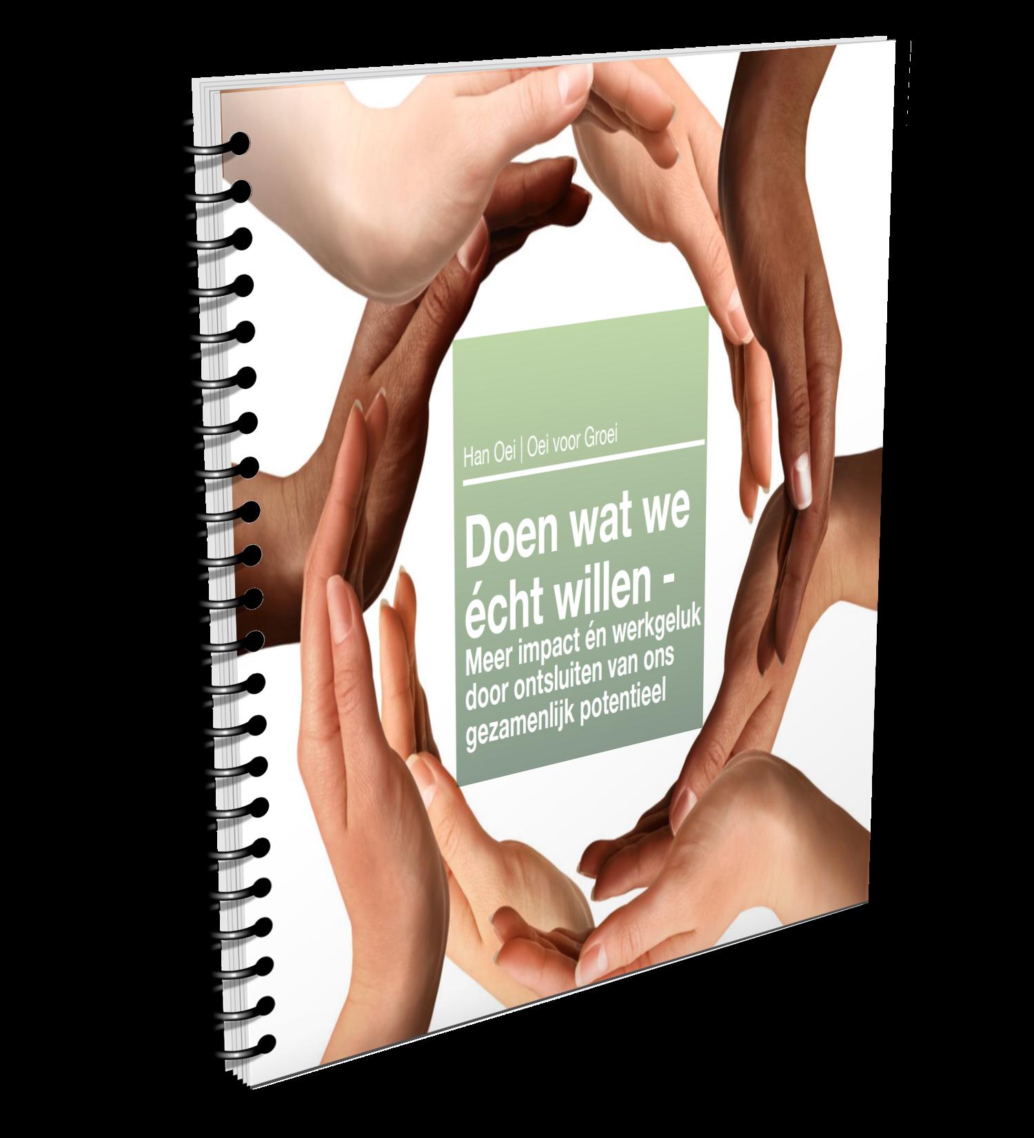 eBoek Doen wat we écht willen | Han Oei | Coaching | Utrecht
