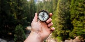 Jouw Persoonlijk Kompas in Werk en Leven